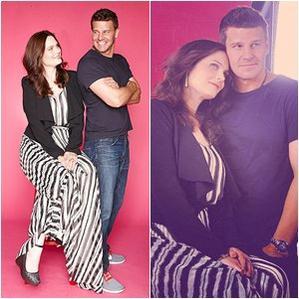 • •  Quelques photo de David & Emily du comic con •