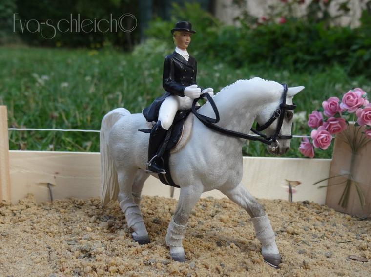 photo show haras schleich2 les ecuries du cheval de bois. Black Bedroom Furniture Sets. Home Design Ideas