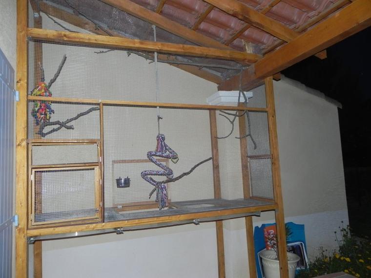 La maison des calopsittes les oiseaux de bialine - Voliere exterieur fait maison ...