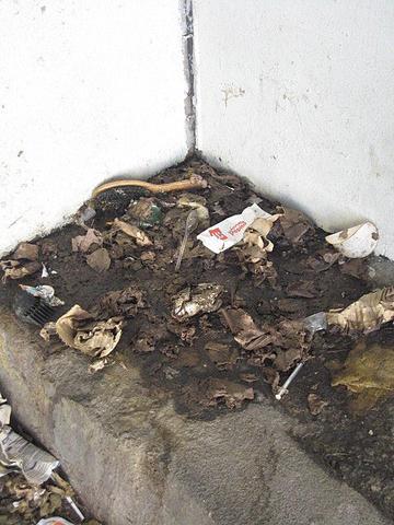 La journ e mondiale des toilettes marseille hier for Mondiale fenetre