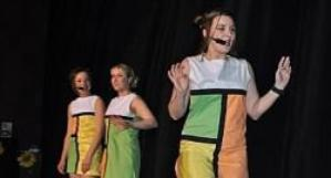 La troupe Z'Artscène Comédie enflamme les planches au centre culturel Brassens