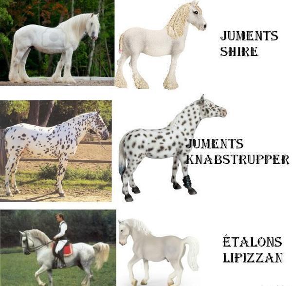 Figurine cheval : Jument Knabstrupper Schleich  Magasin de Jouets pour Enfants