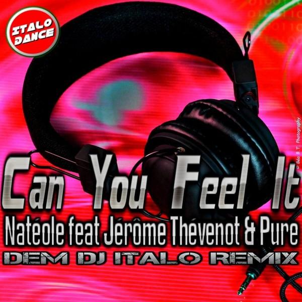 Natéole feat. Jérôme Thévenot & Pure - Can You Feel It (Dem DJ Remix)
