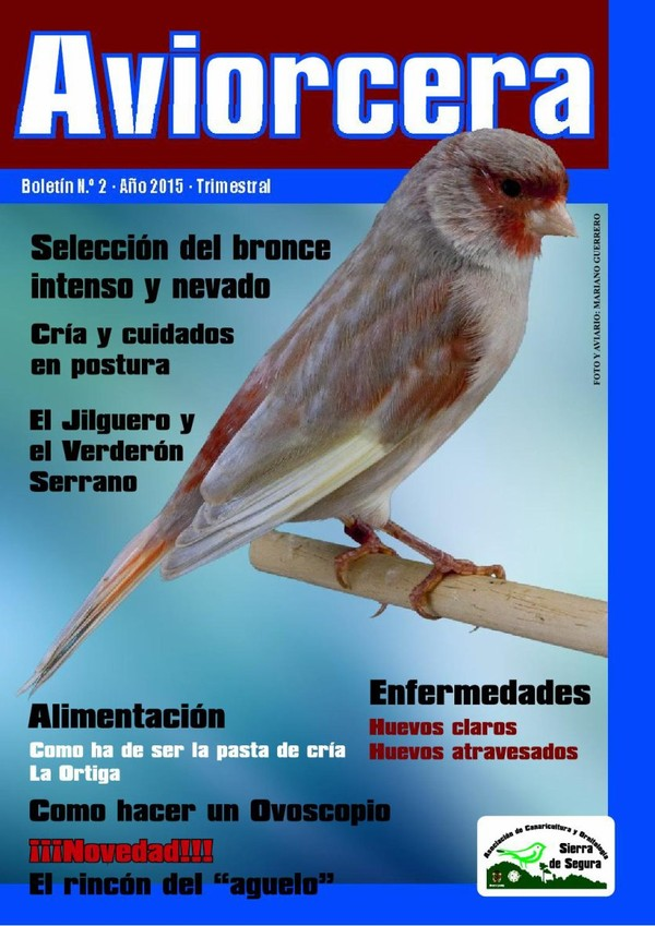 AVIORCERA nº 2. Publicación ornitológica online