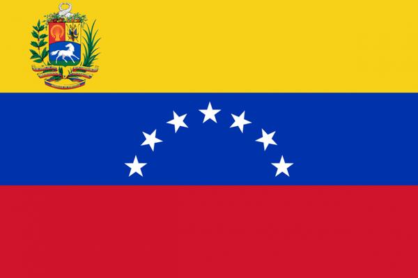 Venezuela, caso práctico: Proteja sus activos, antes de que sea demasiado tarde