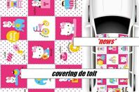 covering toit