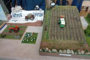 1ere Exposition de miniatures agricoles a Algolsheim (68) 2015