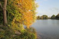 ☻*☻*☻* nous voila vraiment en automne *☻*☻*☻*