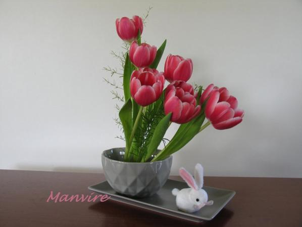 Parmi les ambassadrices du Printemps, la tulipe tient bien son rôle...