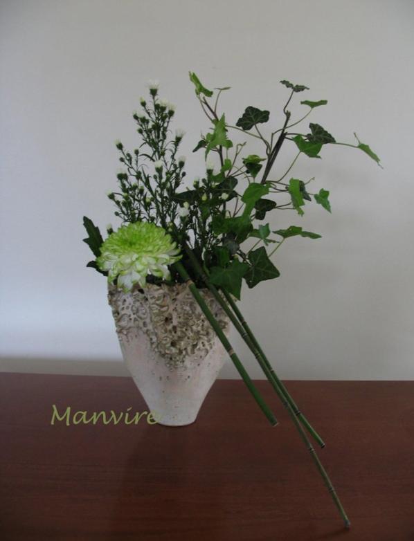 Un bouquet de verdure....bon week end.