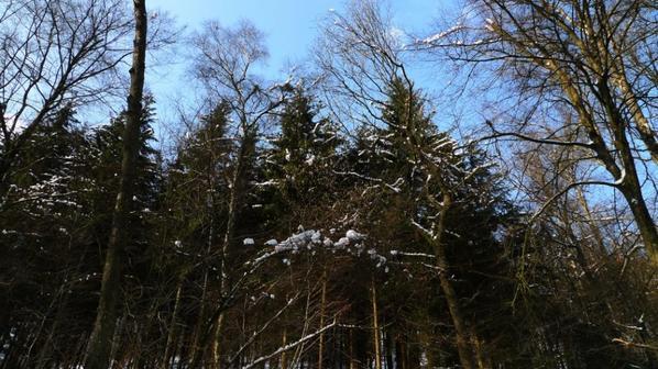 Balade hivernale le 13 février 2013