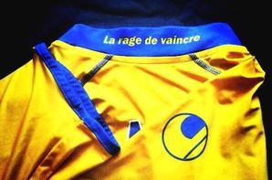 Maillot Haminu Draman domicile saison 2012/2013 (100euros ebay) changement sponsors