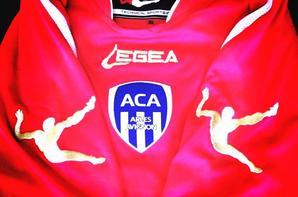 Maillot Ludovic Butelle saison (2013/2014) au profit d'A.E.S.I. Bénin.