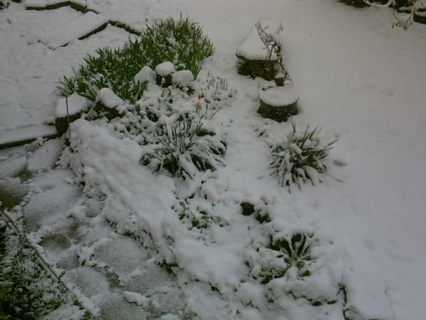 de la neige début mai  \(*o*)/