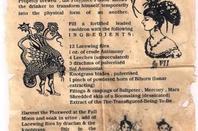 Hermione qui prépare le polynectar