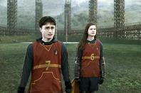sélection de quidditch