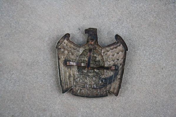 Insigne NSKOV ( don de Mr GUTEREZ Frédéric )