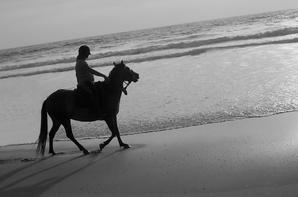 La plage 2012 ♥
