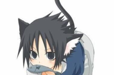 Le délir de sasuke ^^
