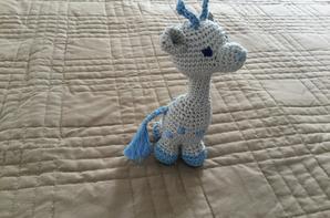 girafes parties au maroc