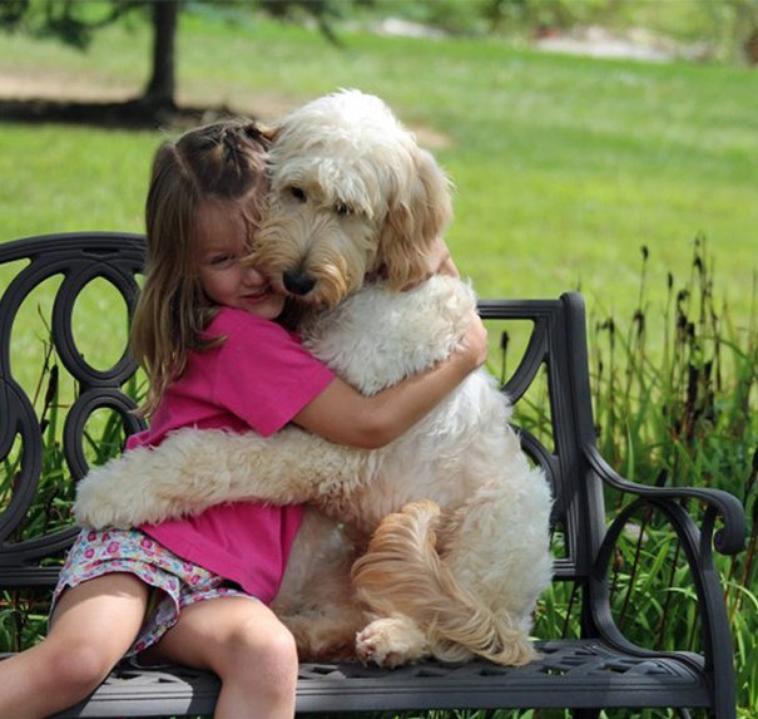 Qu'est ce que le chien est un ami !!