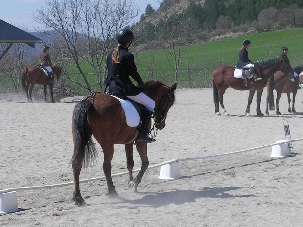 Dressage du 13 avril 2014 avec Vladou