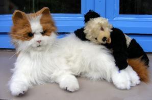 Je viens de recevoir mon petit Panda hauteur 27 cm ,un petit amour..