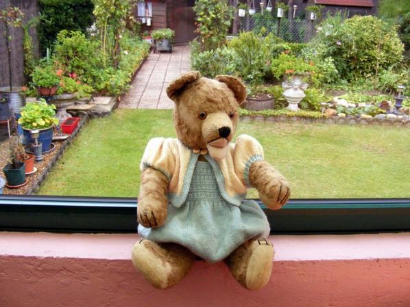 Harry vous souhaite une bonne journée!il y à mis sa petite laine le temps refroidi+++++