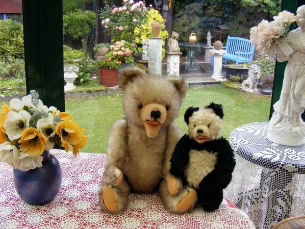 Arold et mon panda vous souhaites un bon début de semaine
