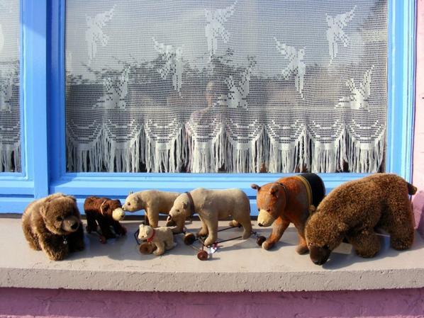 Mes ours polaire vous souhaites une belle journée avec du soleil+++