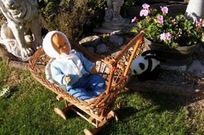 Premier sortis de Romeo au jardin,bonne soirée à vous tous++++