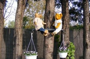 Rodophe et Gentheman dans notre jardin !très beau dimanche à vous tous++++