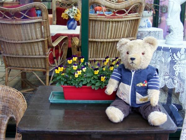 C'est la fête à mon ours Wolfgang+++++il vous souhaite une belle journée+++