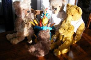 Ma dernière trouvaille un Canard à plume qui chante qui tourne et qui parle ,mes ours s'amuse et moi aussi+++