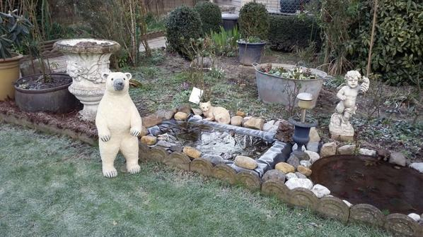 Mon ours dans notre jardin ce matin gelée+++++