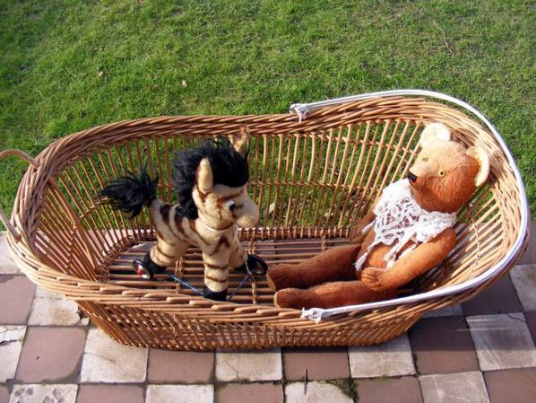 Albin profite des premier rayon de soleil avec le petit zèbre  sur roues+++