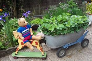 Un petit coucou de Goliat au jardin+++++