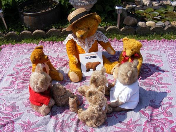 Histoire d'ours!une maman ours raconte des histoire d'ours dehors au soleil sur la couverture+++