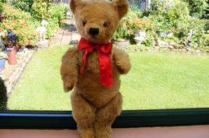 Aldo viens d'arrivé ,je pense Anglais né vers 1920-30 remplis souple avec de kapok très bel ours hauteur 62 cm ++++