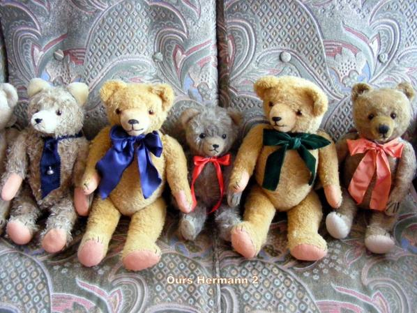 un petit coucou de Mes ours Hermann,belle journée à vous tous++++
