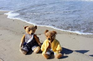 Nous venons de la la mer  belle soirée à vous tous+++++