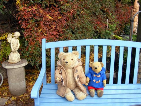 Wolfgang et Amédor au jardin d'automne vous envoi un petit coucou à vous tous++++