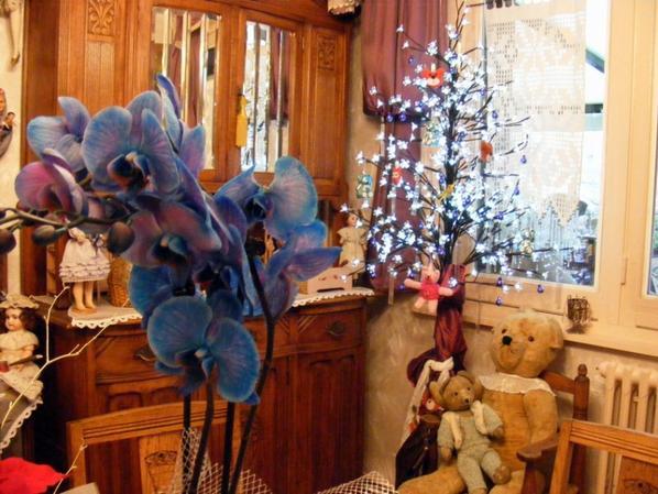 Un Noël merveilleux et des jolies cadeaux+++++