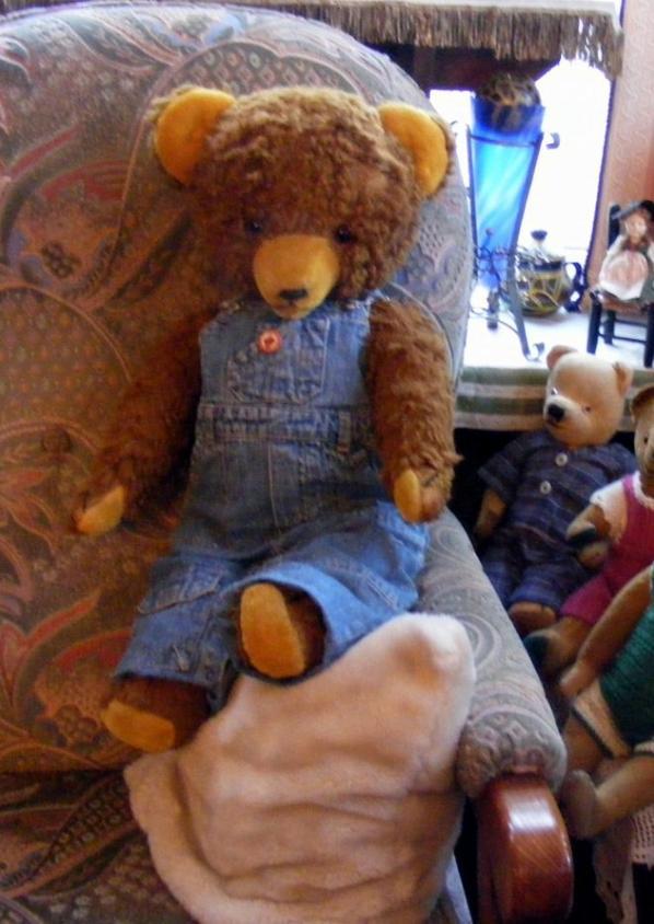 Je vous montre mon dernier ours arrivé hier il s'appelle Gustavo++