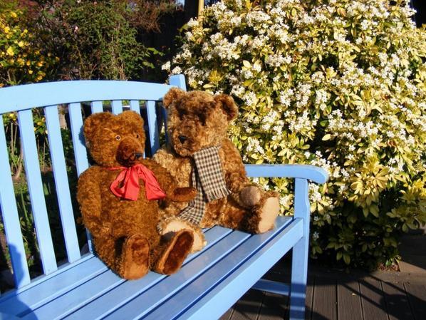 Mes ours Diem vous souhaites un beau dimanche à vous tous++++