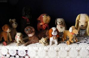 Ma petite collections de chiens vous font un petit coucou à vous tous+++++