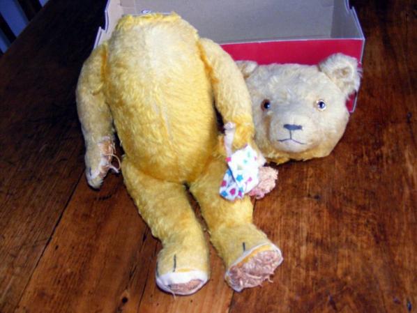 Voici mon petit dernier Nourdine ours Américain hauteur 40 cm++