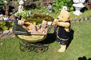 Le soleil est de retour ma famille ours se promènes dans notre jardin !