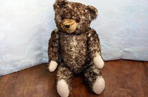 Mon ours Sébastien vous fait un petit coucou c'est mon dernier pour le moment.