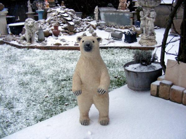 Hier soir il tombé la neige  aujourd'hui tout à disparus+++